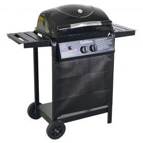 Barbecue a gas 2 bruciatori con ruote